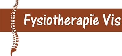 Fysiotherapie Vis